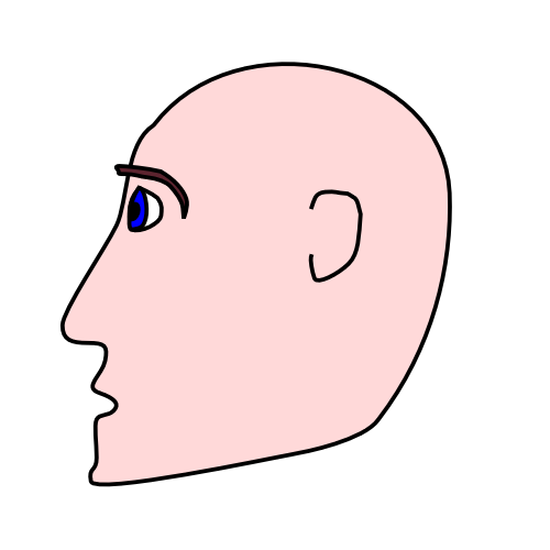 Head clipart Of Domain Clip page Art