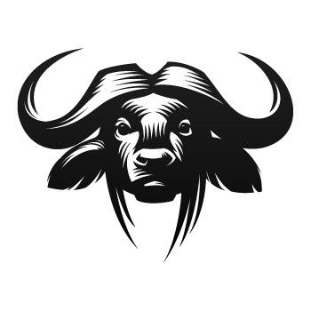 African Buffalo clipart drawn Buffalo cape best drawing images