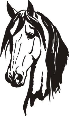 Head clipart quarter horse Silhouette Buscar horse silhouette puertas