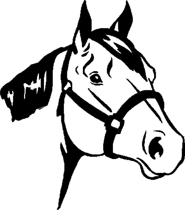 Head clipart quarter horse And & DP Jones Cliparts
