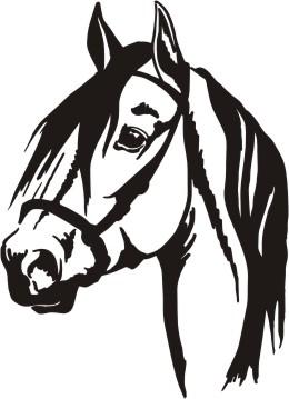Head clipart quarter horse Head horses quarter art horse