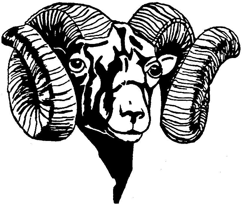 Bighorn Sheep clipart bull elk Ram Free Art Head Clip