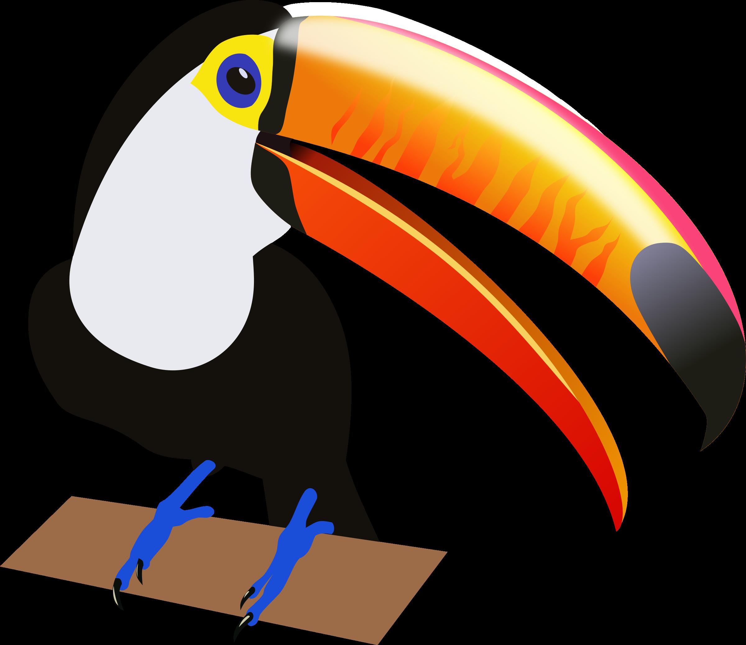Toucan clipart tropical bird #5