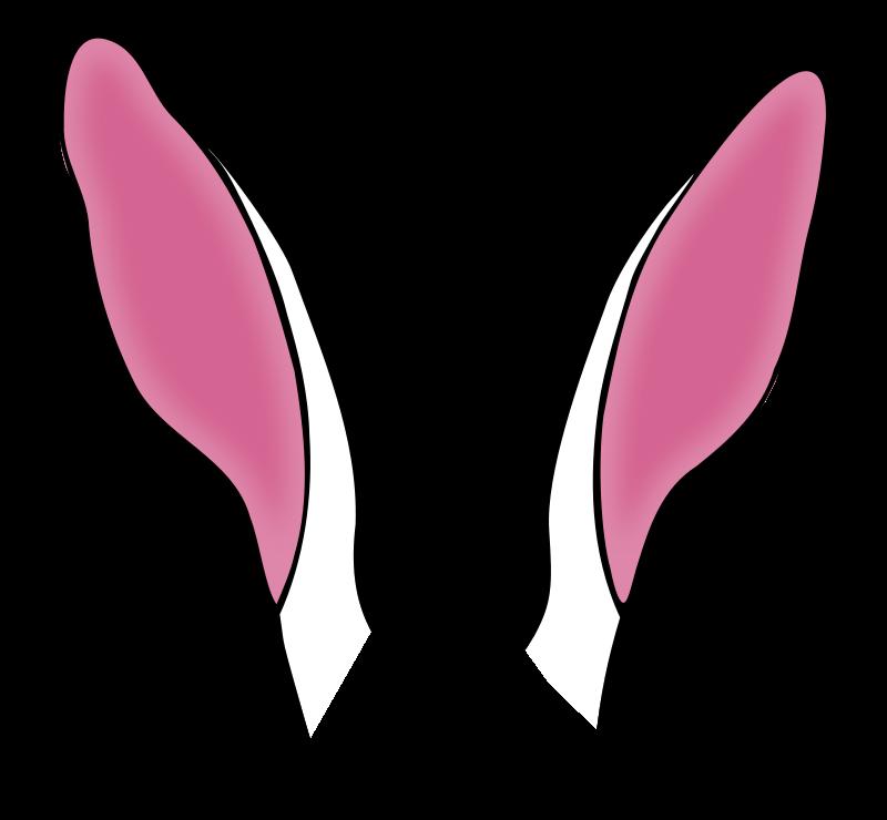 Headband clipart rabbit ear On ~ Clipart 2488 Ear