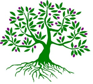 Healing clipart rooted tree Tree Tree in in Plant