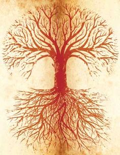 Healing clipart tree root Root for Chakra Pinterest clipart