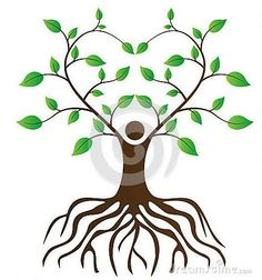 Healing clipart tree root Art Illustrations Images clipart Clip