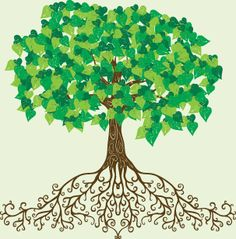 Healing clipart tree root Clipart roots clipart flourishing pretty