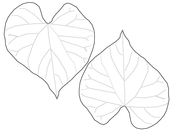 Heart-shaped clipart leaf #6
