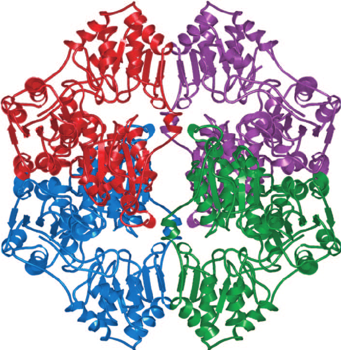 Heat clipart ahas Synthase in role Overall Acetohydroxyacid