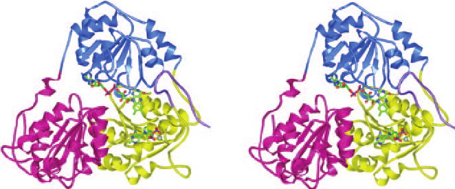 Heat clipart ahas Synthase in role Stereo Acetohydroxyacid