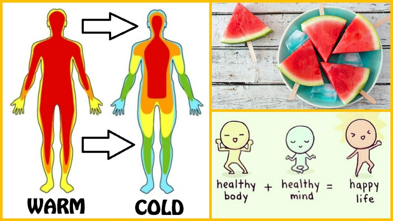 Heat clipart body temperature Food Temperature and Body For