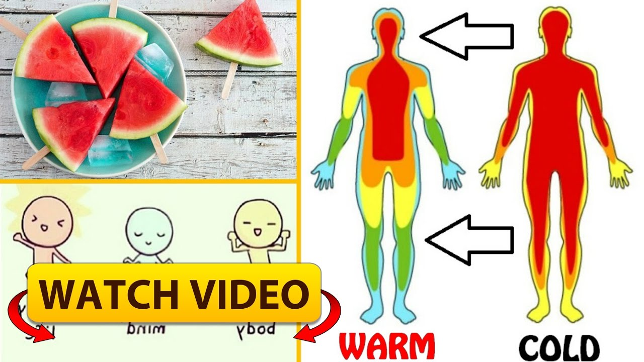 Heat clipart body temperature Body Body Heat to and
