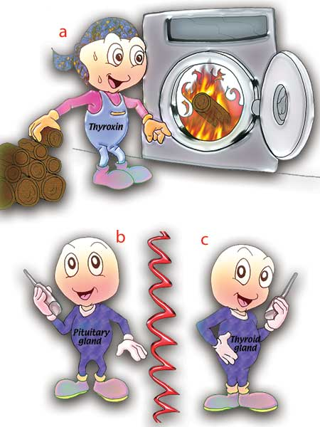 Heat clipart sensitivity To be give increased—yet off