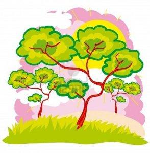 Heaven clipart jannah  tree today Plant coelaifullife