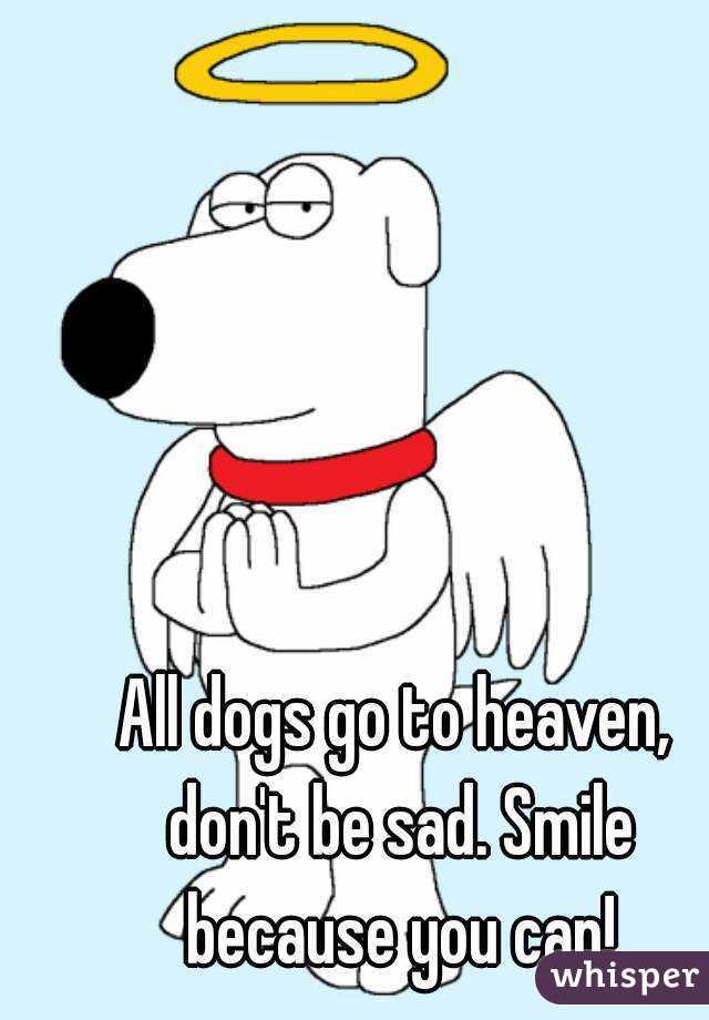 Heaven clipart sad Sad because Smile dogs you