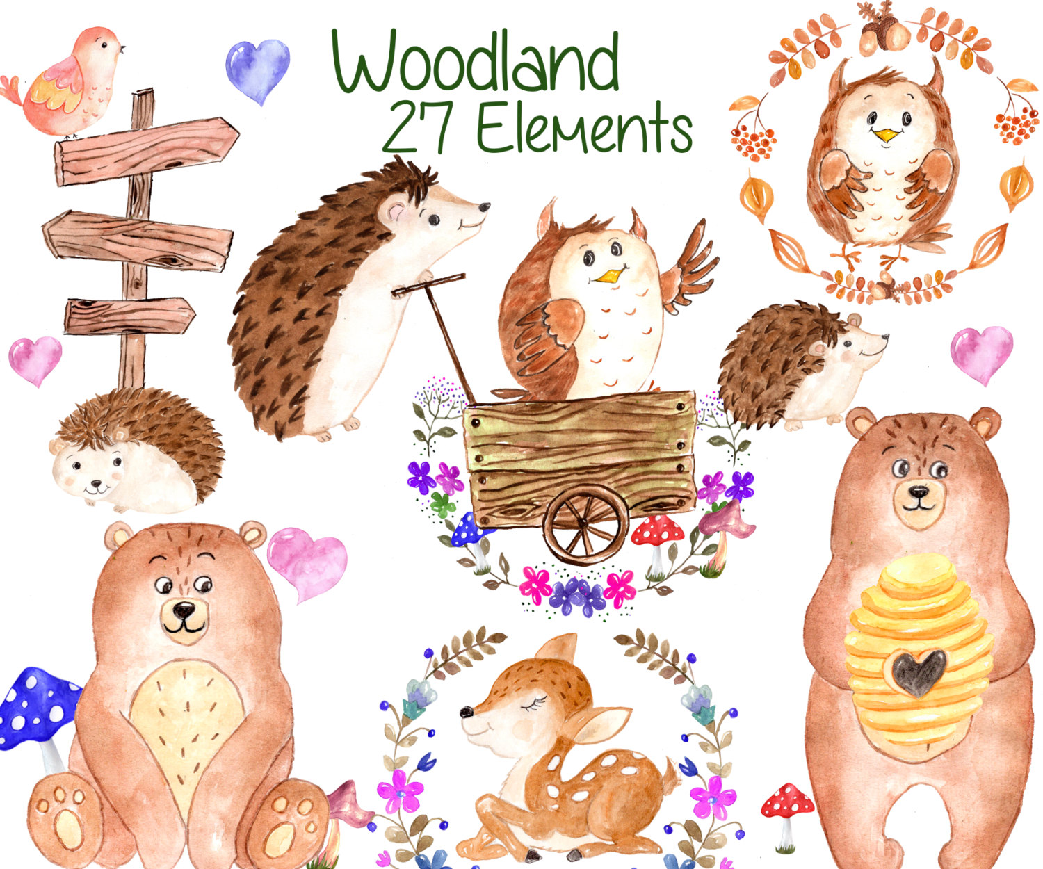 Hedgehog clipart forest animal Clip  Watercolor