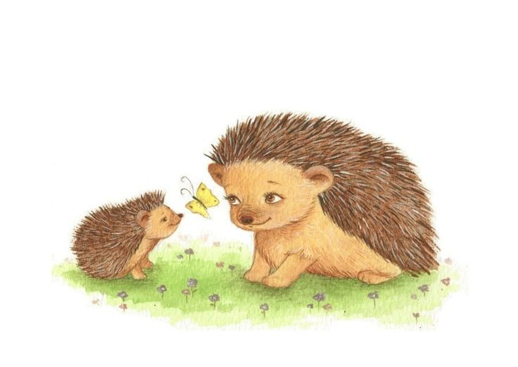 Hedgehog clipart hiran Images best on HEDGEHOG more