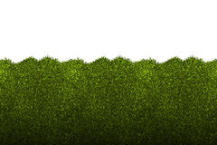 Hedges clipart shrubbery By clipart Clipart collection Hedge