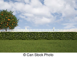 Hedges clipart green 060 with Garden white