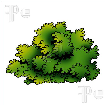 Hedges clipart black and white Bushes Shrub cliparts Clipart