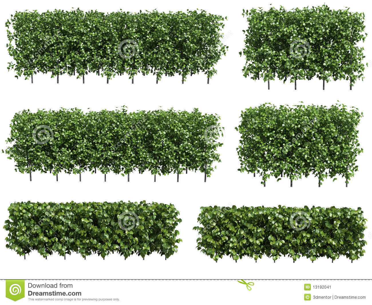 Hedges clipart green Illustrations Hedge collection Stock Hedge