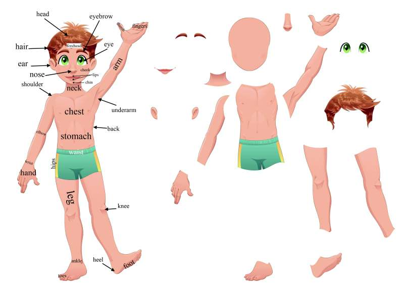 Heels clipart body part  learn Parts Games the