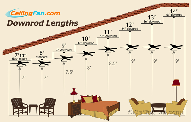 Heights clipart length #4