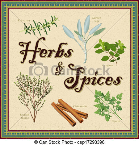 Herbs And Spices clipart different kind Border Spices Vectors Border and