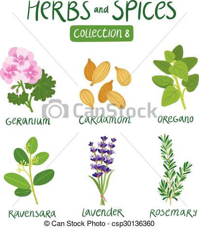 Spices clipart vector Clip For 8 Art and