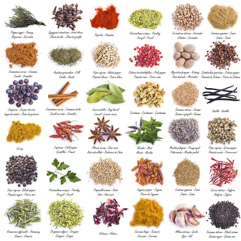 Herbs And Spices clipart different kind Used culinary will Antioxidant to