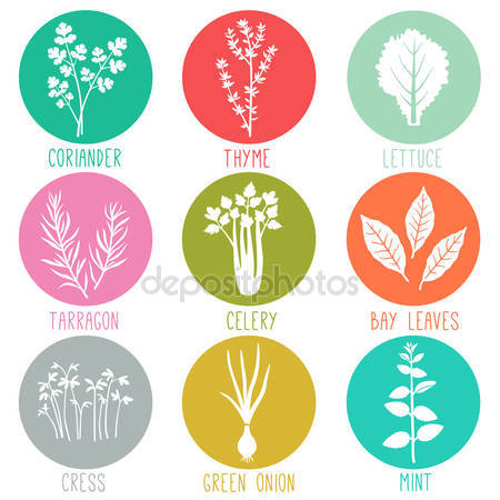Turmeric clipart herbs and spice Free Fresh icons Turmeric Stock