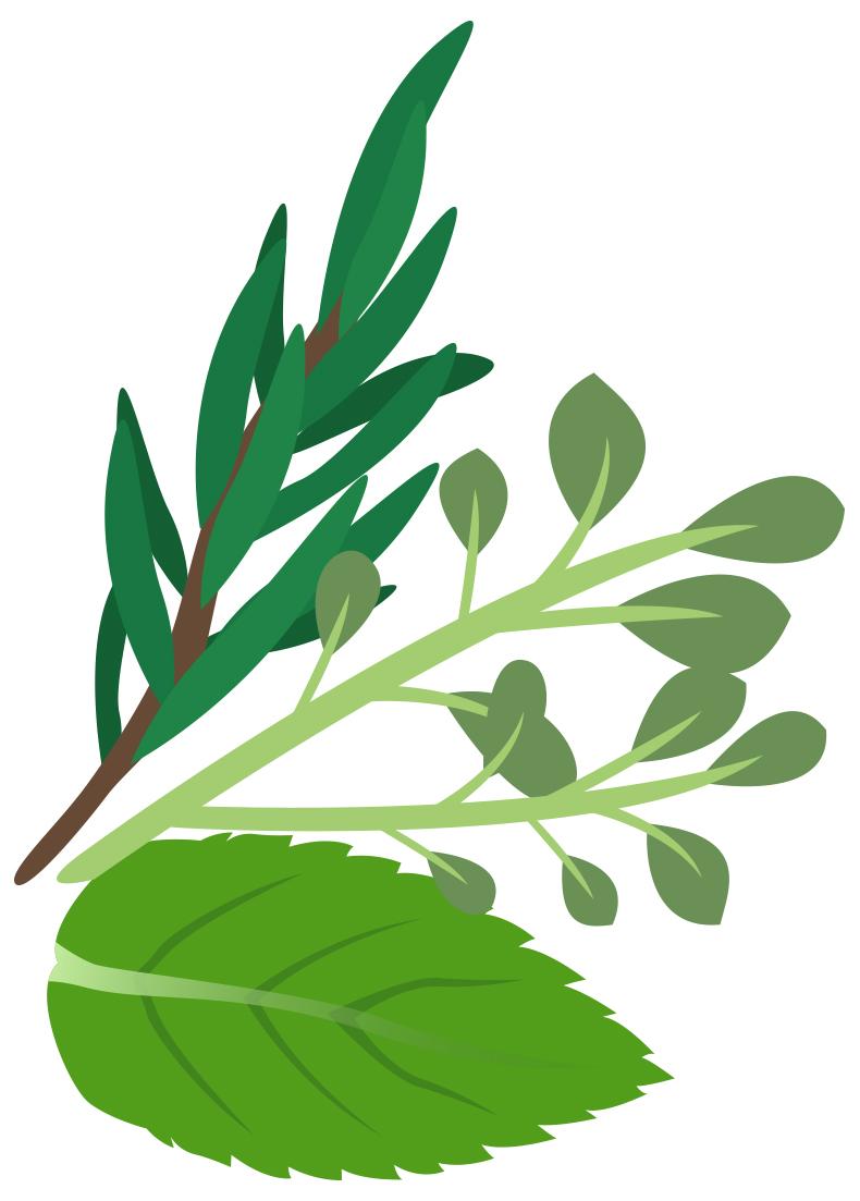 Herbs clipart Art Herbs Clip Clip Clipart