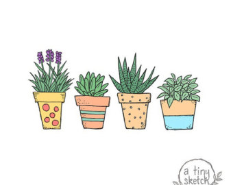 Drawn pot plant clipart Transparent png potted drawn hand