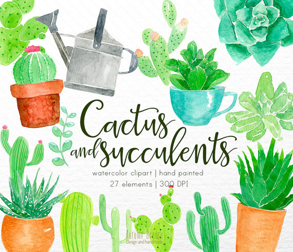 Herbs clipart cactus plant Succulent and succulents Wedding cactus