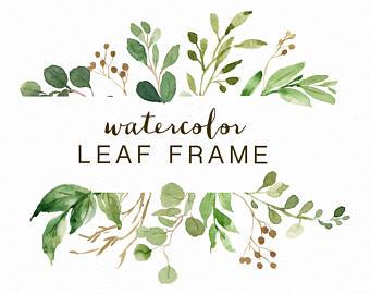 Herbs clipart eucalyptus leaves Etsy Leaf frame/leaves/wedding Leaf/ invitation/clipart/