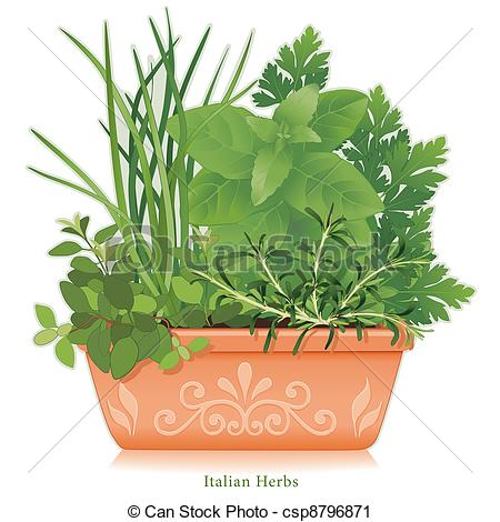 Parsley clipart italian Art Herb Italian Flowerpot Vector