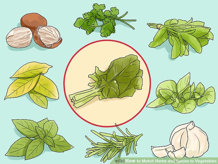 Herbs clipart herbs and spice Step Spices and Match Image