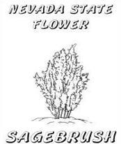 Herbs clipart sagebrush Bush Symbols  for For