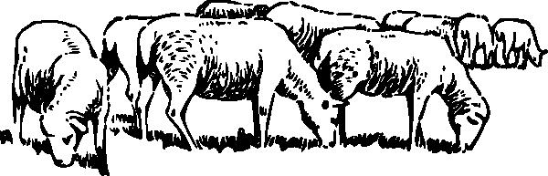Herd clipart Clipart photo#6 Sheep Clipart Sheep