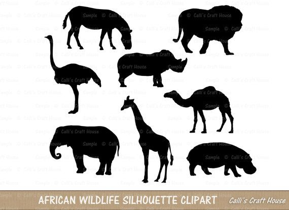 Zebra clipart shadow By African 55 Digistamps/Clipart best