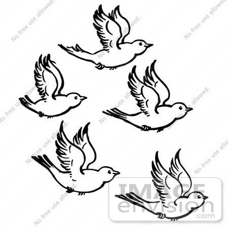 White clipart birdblack Clipart Black And Bird Flying