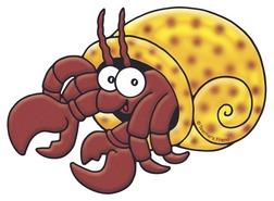 Hermit Crab clipart #1