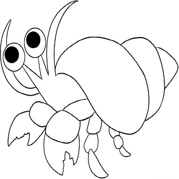Hermit Crab clipart #14