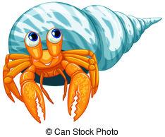 Hermit Crab clipart #5