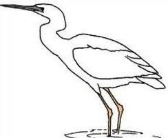 Heron clipart Clipart Heron Heron Free