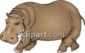 Brown clipart hippo Picture Royalty Hippo Free Brown
