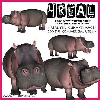 Bonobo clipart real animal Art Hippo art Hippo 4