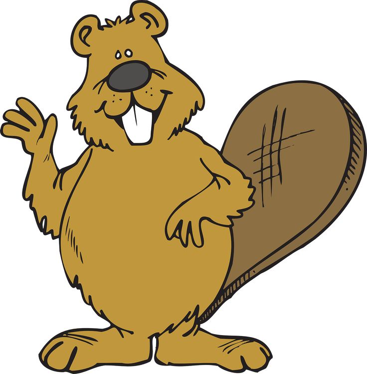 Beaver clipart canadian history Pin Ed Canadian History more