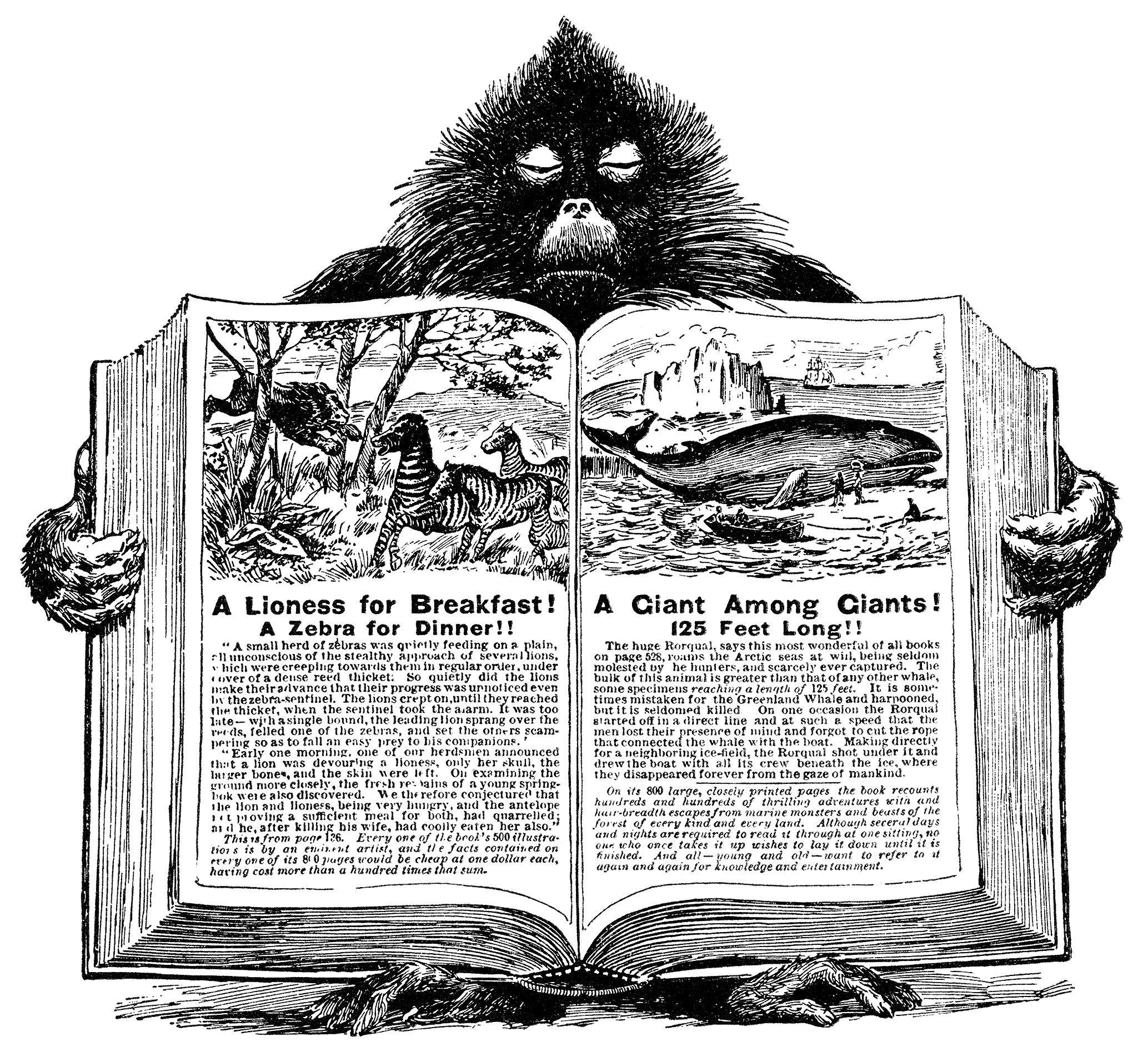 Cliparts History Book Book Clipart